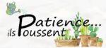 patience_il_poussent-3.jpg
